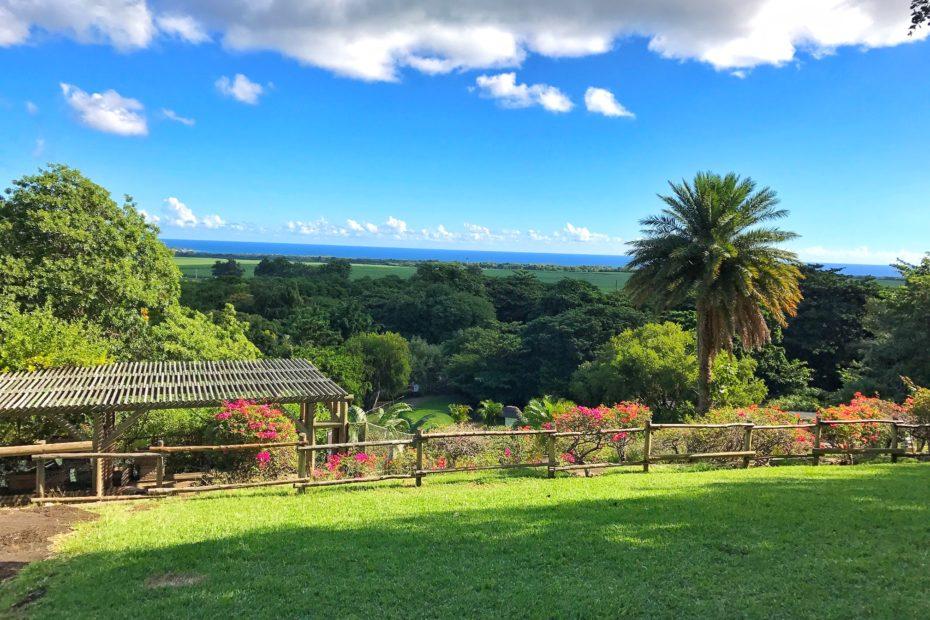 Mauritius Casela park nature